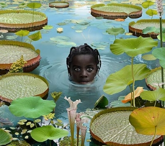 Nederlandse photoshop kunstenaar